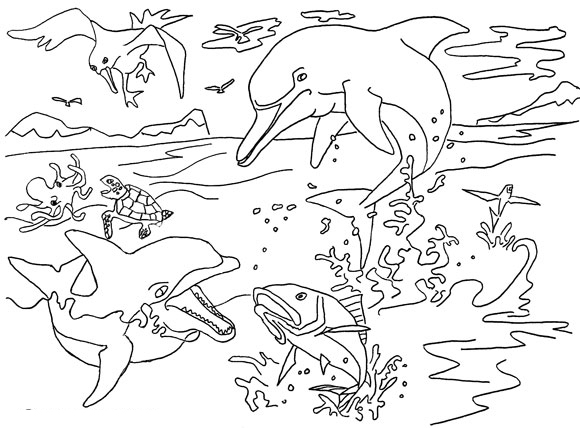 Dolphin Coloring Pages 11